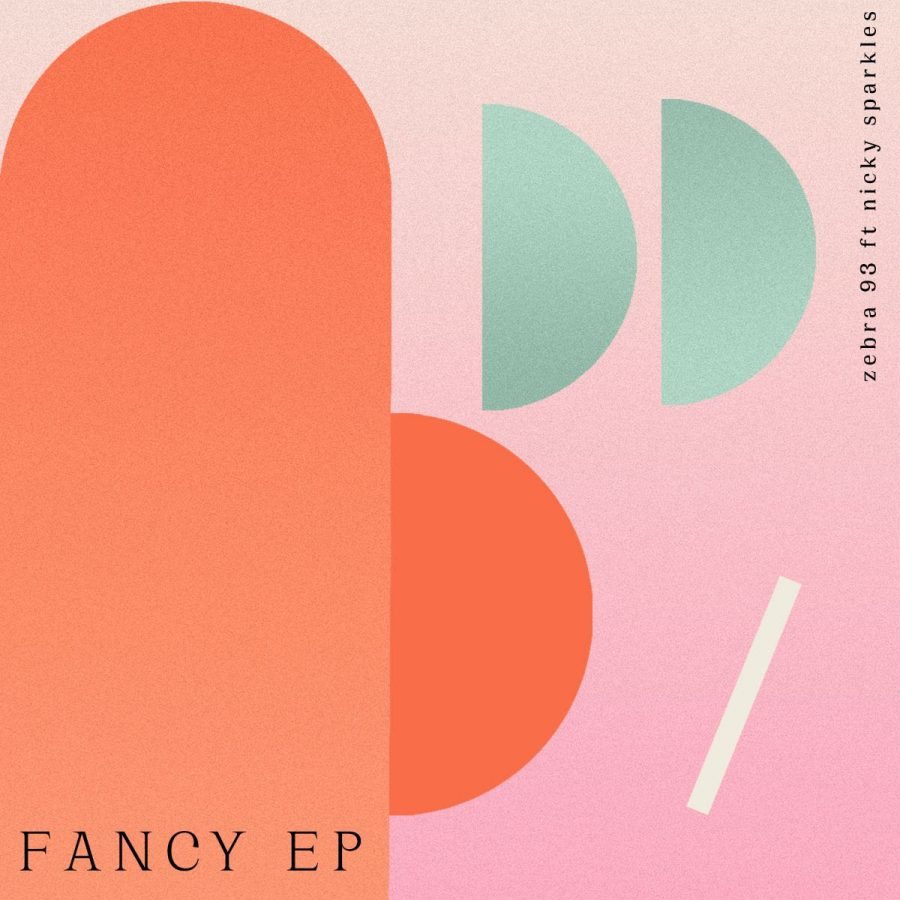 "El grupo Zebra 93 reedita ""Fancy"""