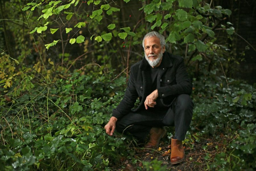Ya está disponible la nueva versión del clásico disco de Yusuf / Cat Stevens: «Tea For The Tillerman 2»
